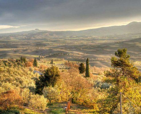 Montalcino Pienza Montepulciano